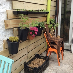 Herbs to hand at Nude Food cafe, deli and bakery in Dungarvan